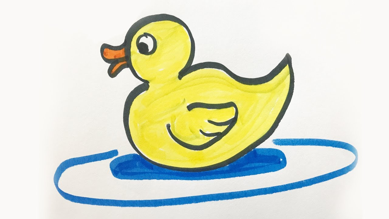 How To Draw And Color A Baby Duck