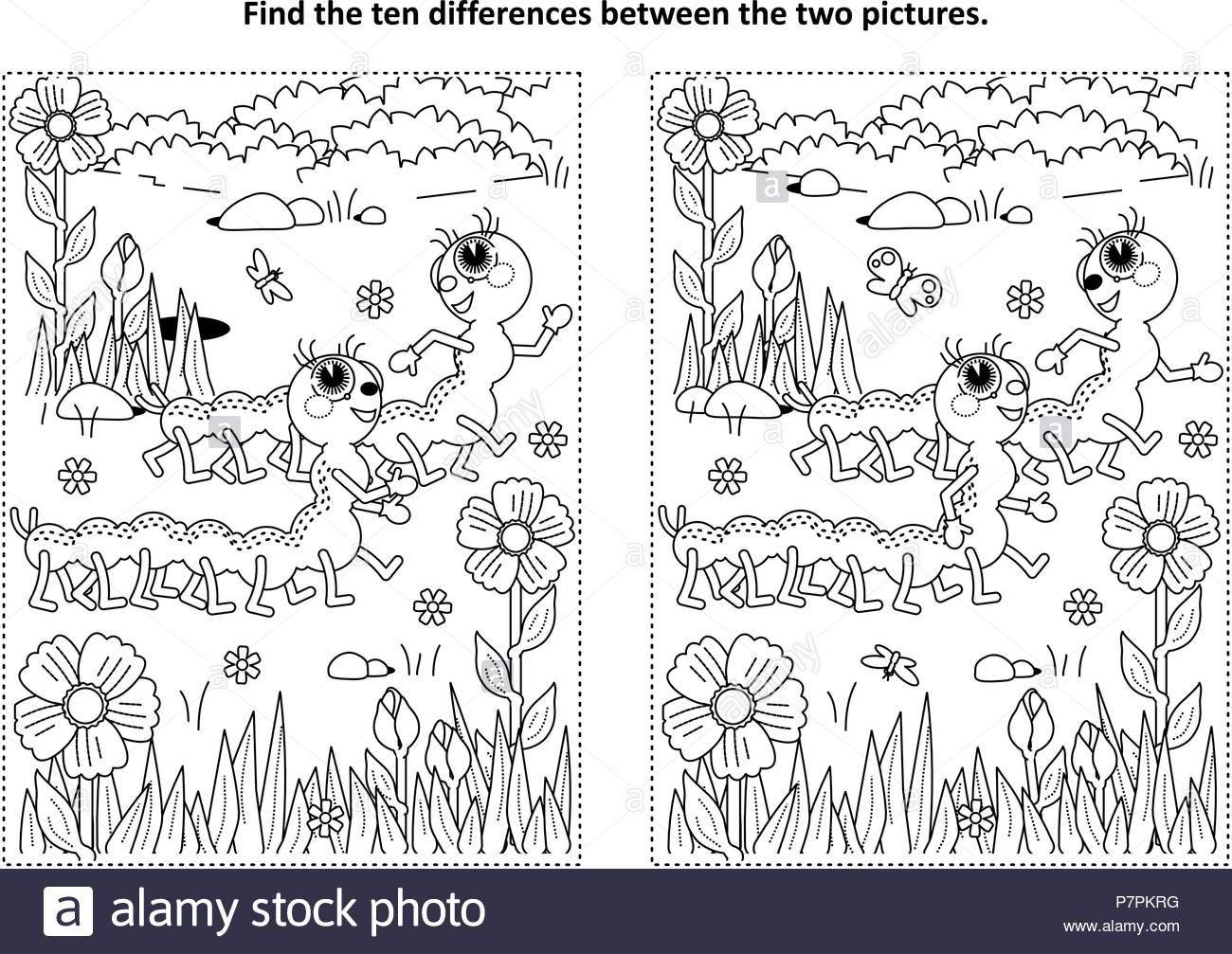 Primavera O Verano Themed Encontrar Las Diez Diferencias