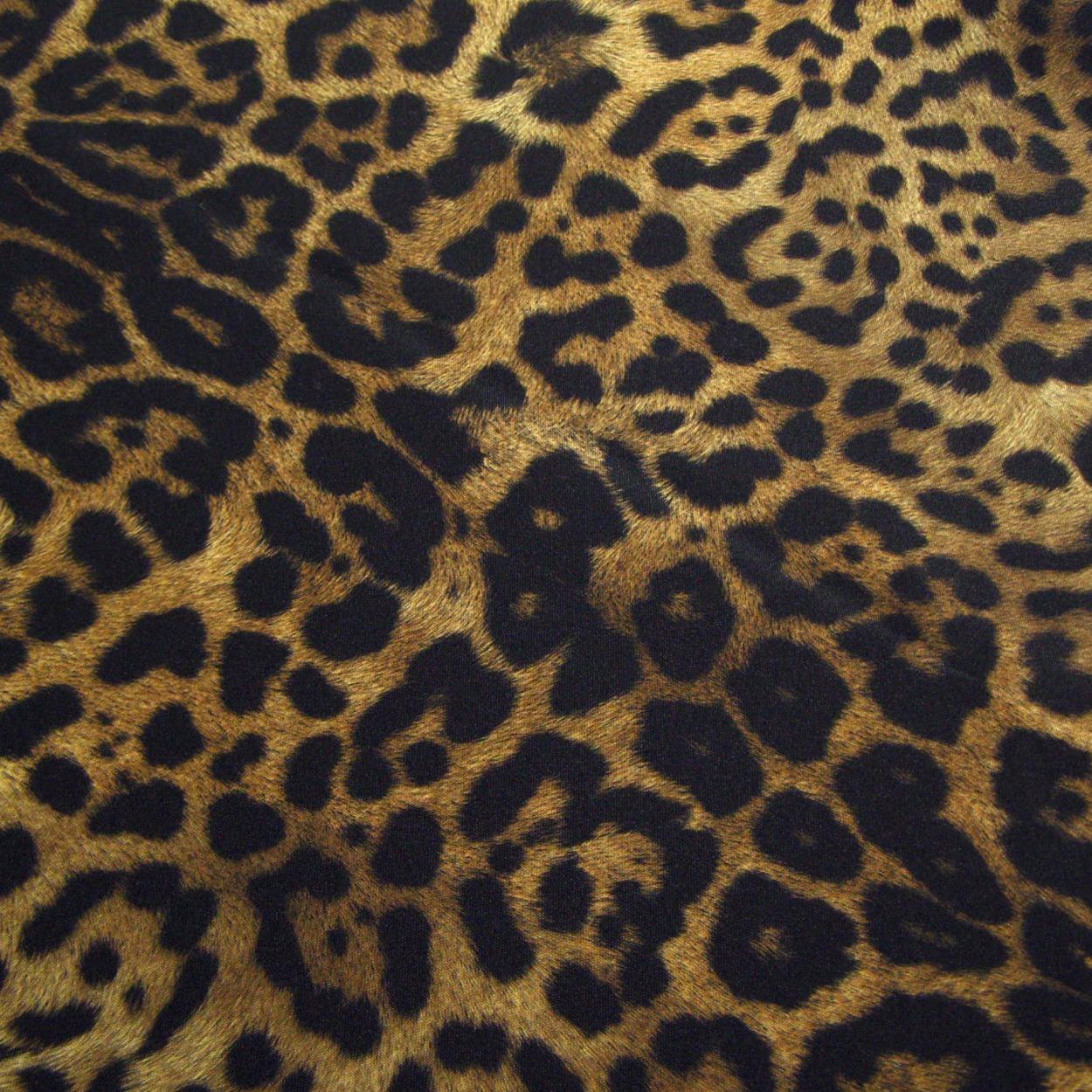 Jaguar Animal Print