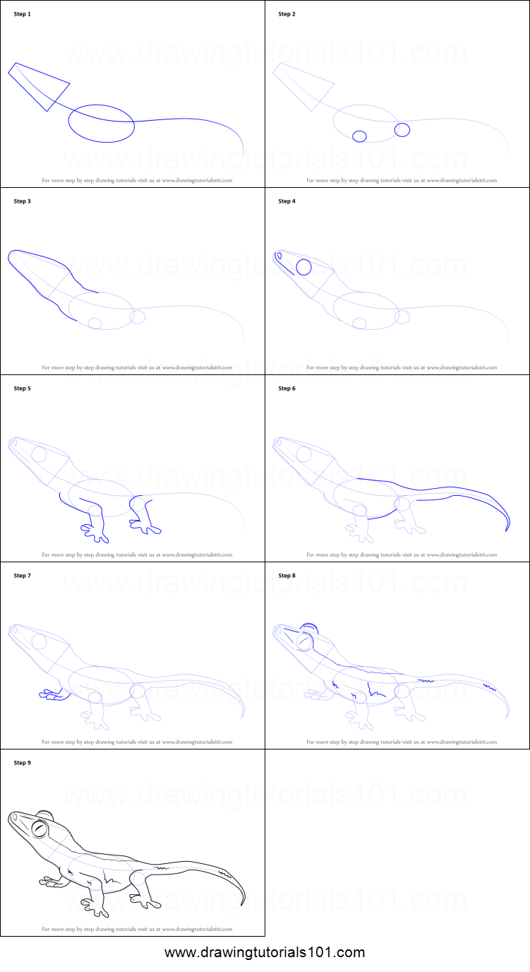 9 Reptiles Drawing Leopard Gecko For Free Download On Ayoqq Org