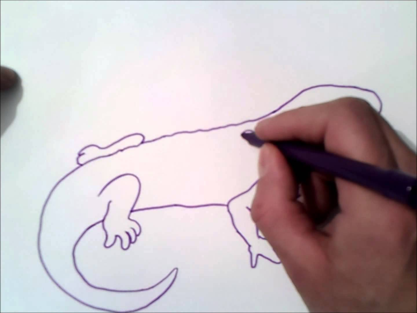 Salamander Paintings Search Result At Paintingvalley Com