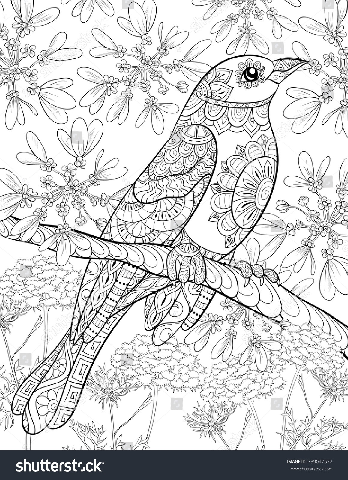 Adult Coloring Pagebook Cute Bird On Stock Vector (royalty Free