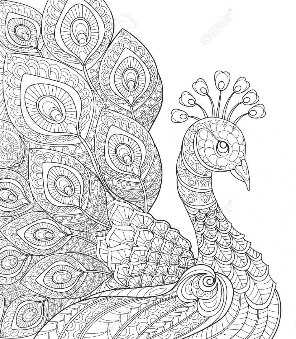 Coloring Pages ~ Stunning Anti Stress Coloring Pages Peacock Adult