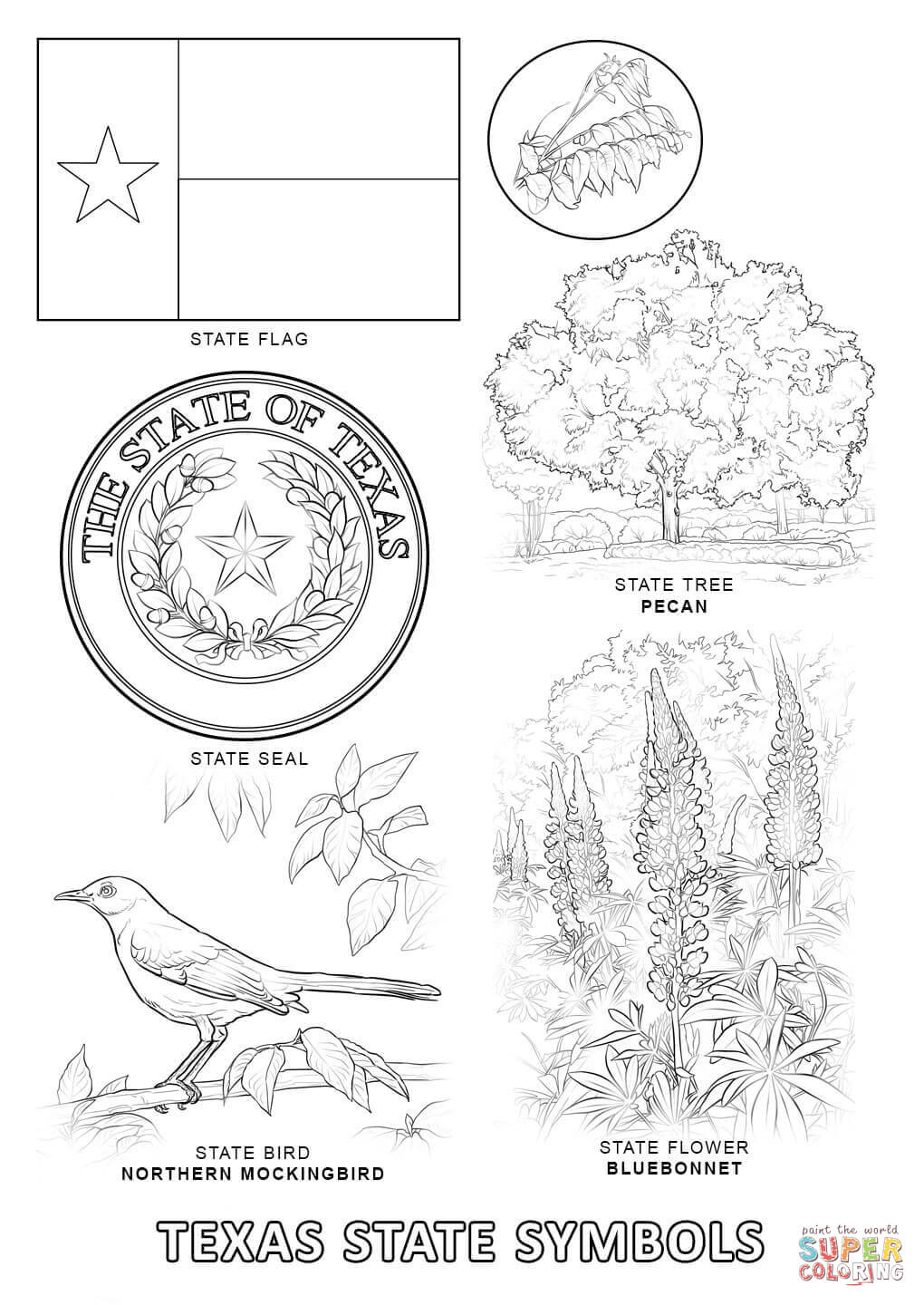 Texas State Symbols Coloring Page Pages 0