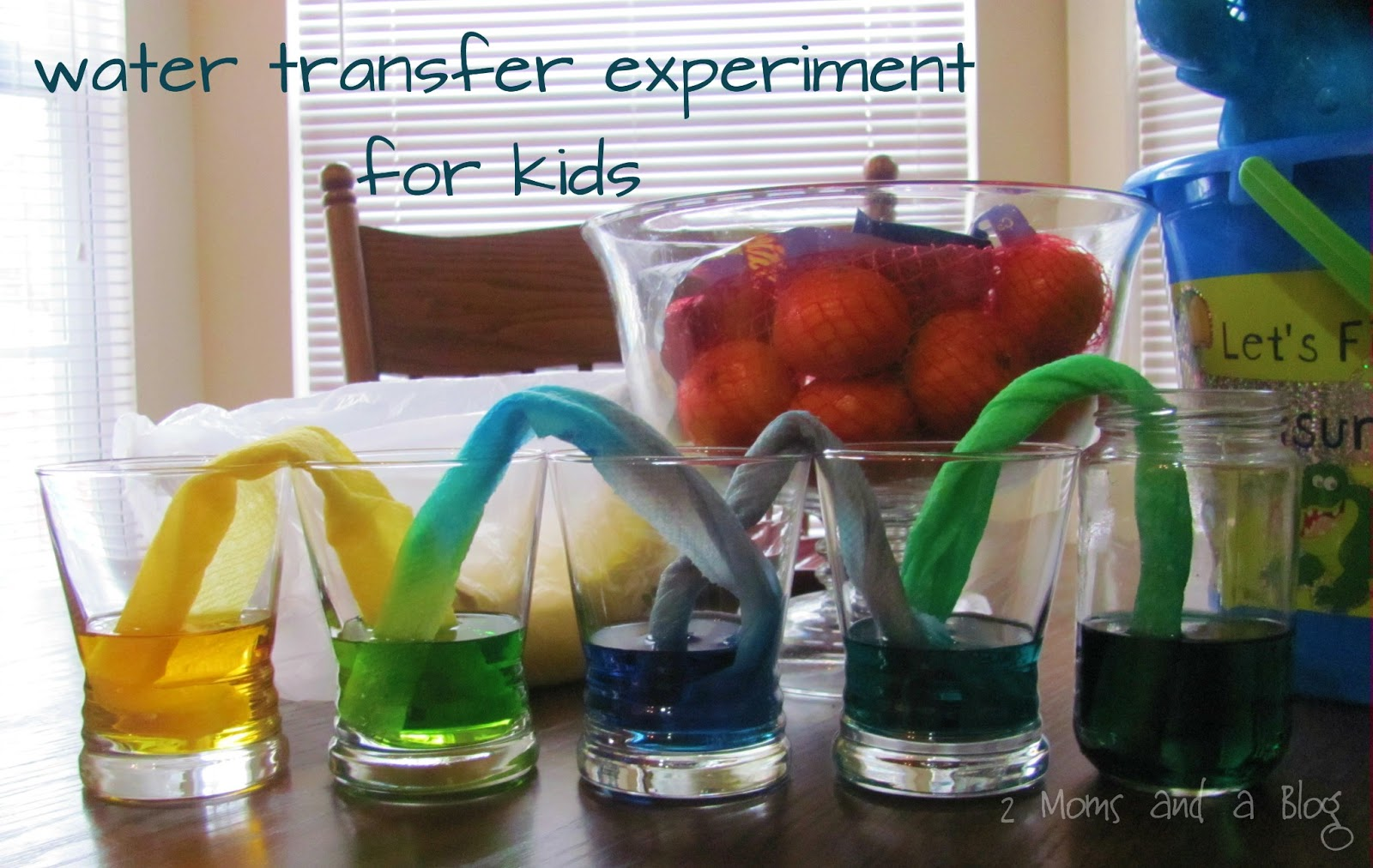 2 Moms And A Blog  Paper Towel Water Transfer Science Experiment