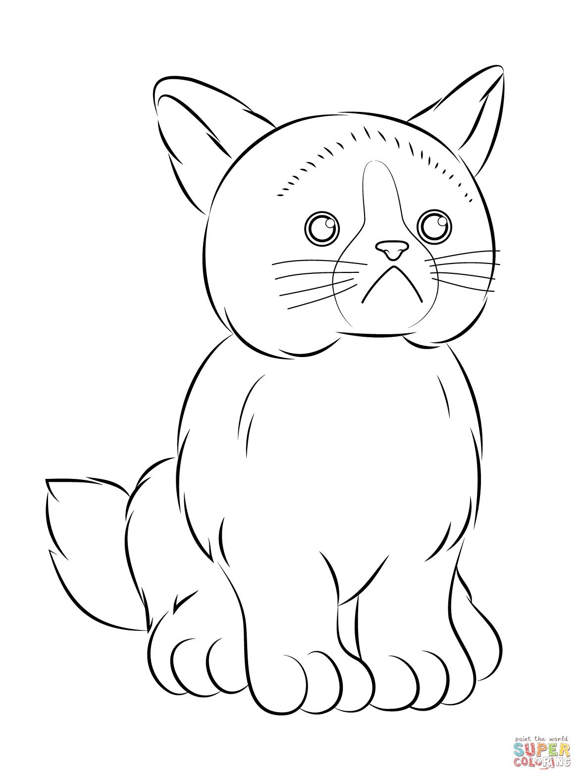 Webkinz Grumpy Cat Coloring Page
