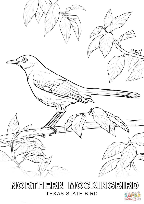 Αποτέλεσμα εικόνας για Bird Outline Template