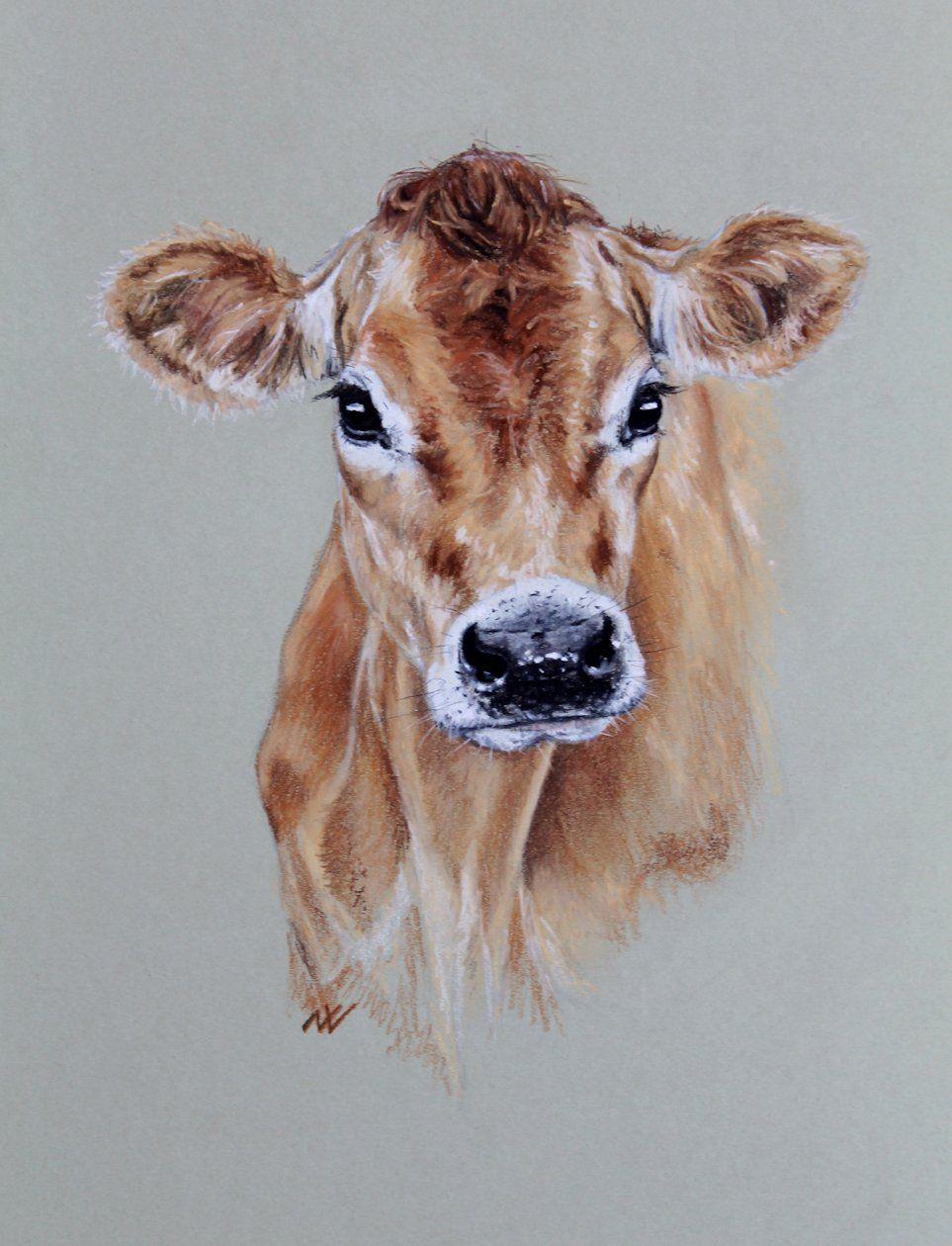 Jersey Cow, Original Pastel Portrait …