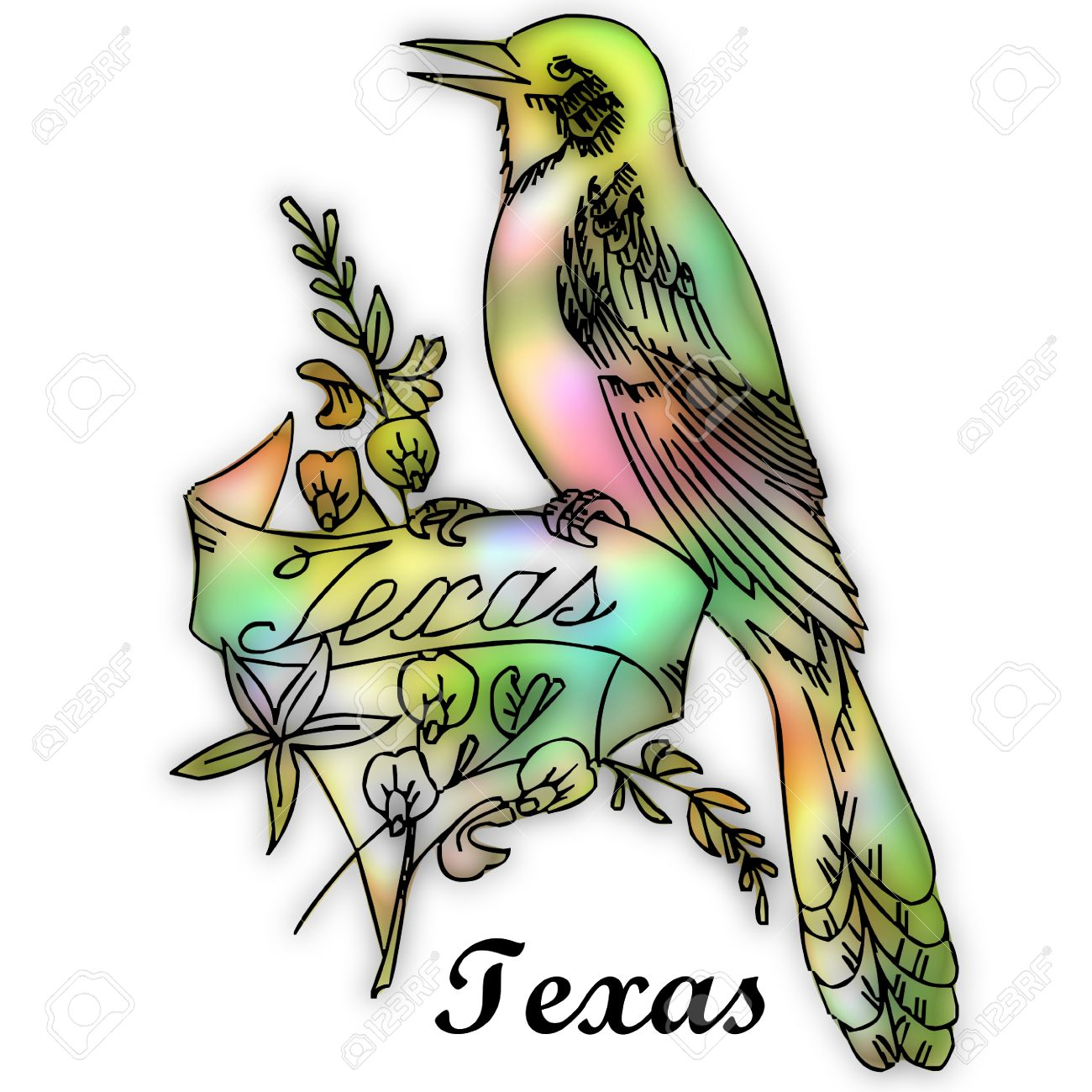 Texas State Bird Stock Photo, Picture And Royalty Free Image