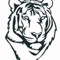 Coloring Pages Of Cute Tigers