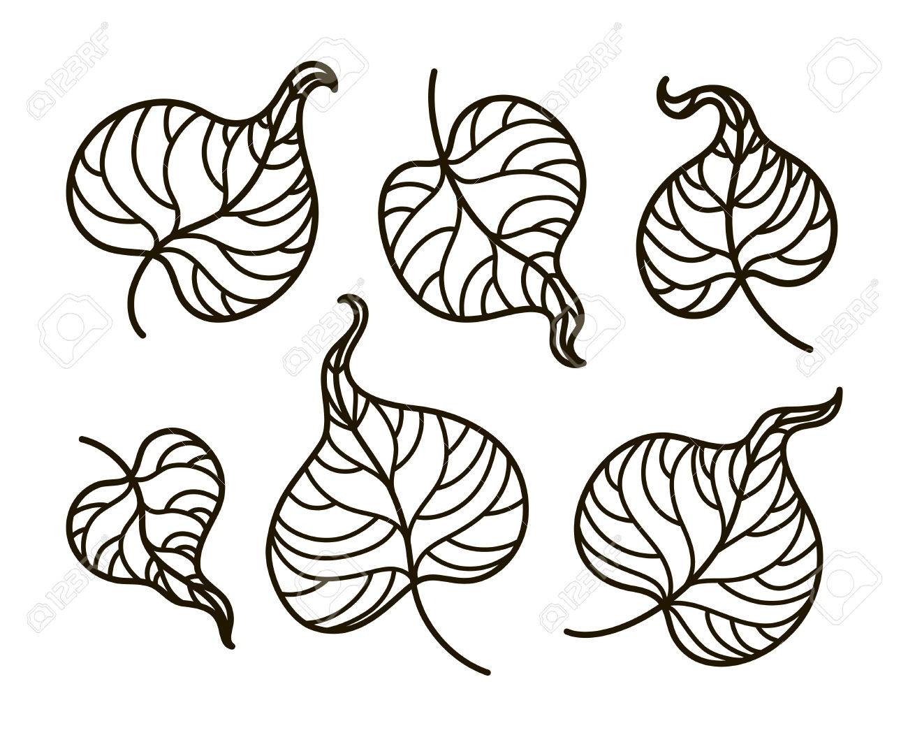 Vector, Ilustración De Contorno, Libro Para Colorear, Conjunto