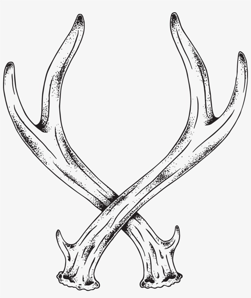 How To Draw Deer Antlers - NEO Coloring