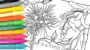 Adult Coloring 101