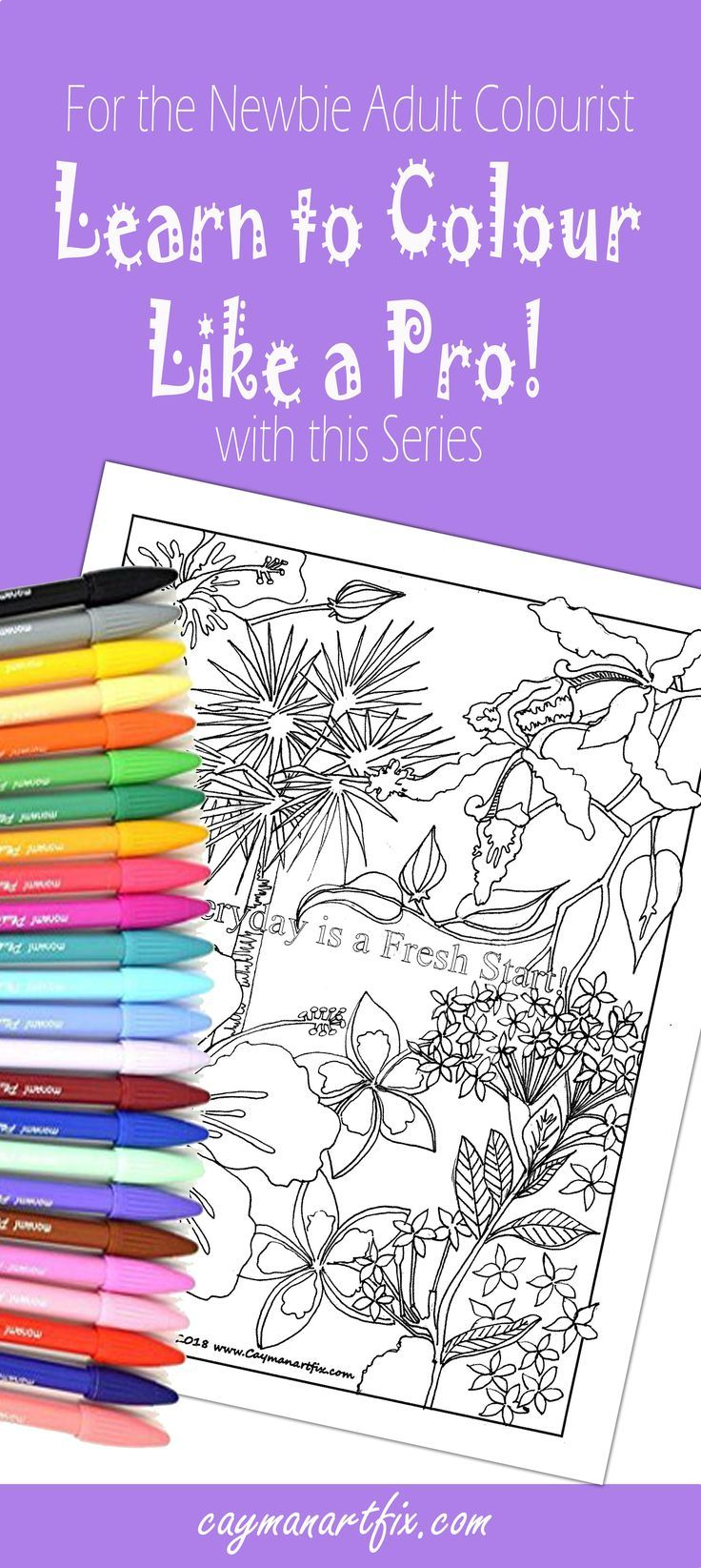 Adult Colouring 101  The Newbie Guide To Colouring