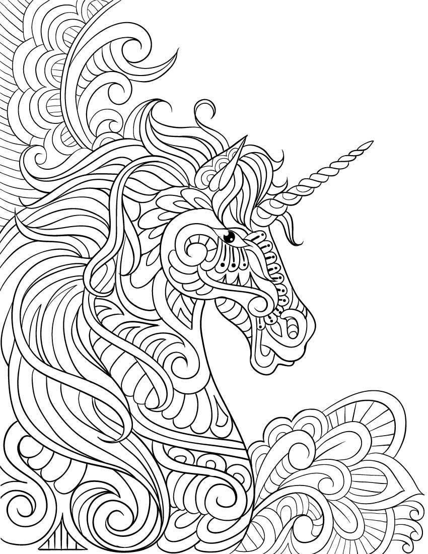 Coloring Page ~ Amazon Com Unicorn Coloring Book Adult Gift Page