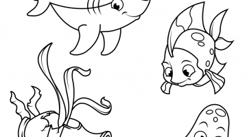 Free Vector Coloring Pages