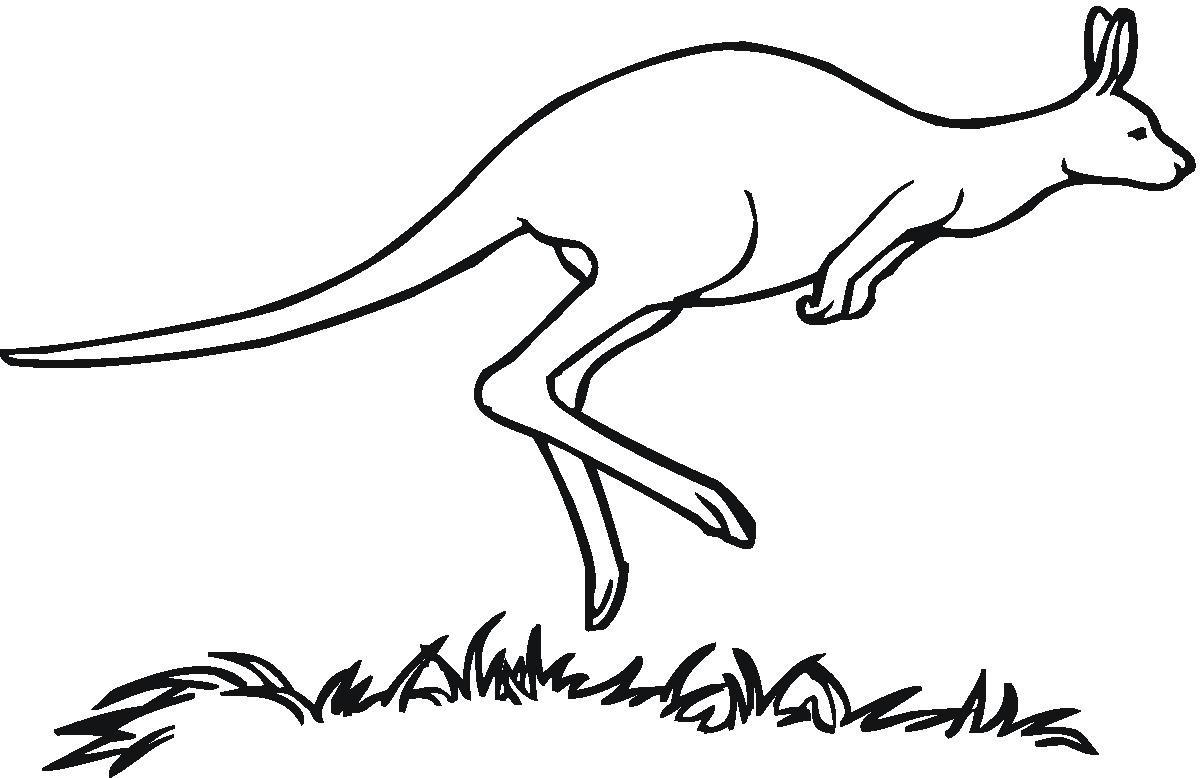 Free Kangaroo Outline, Download Free Clip Art, Free Clip Art On