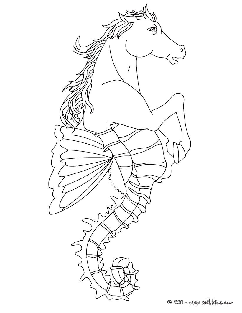 Hippocampus The Half Horse And Half Fish Creature Coloring Page