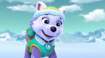 Everest Paw Patrol