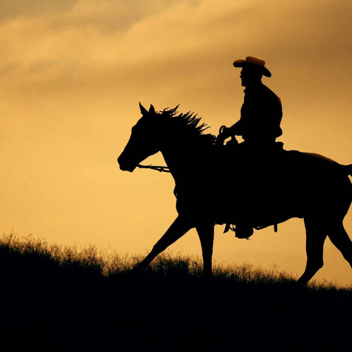 Silhouette Of A Cowboy And Horse At Sunset – Champion Funeral Home