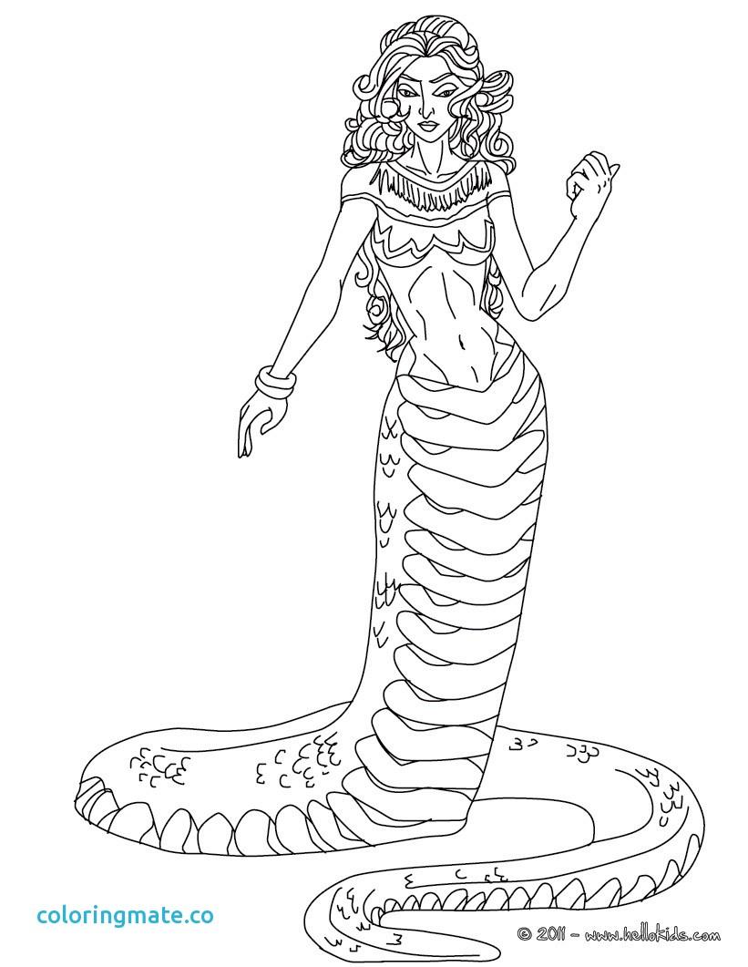 8 Pegasus Drawing Greek Mythology For Free Download On Ayoqq Org