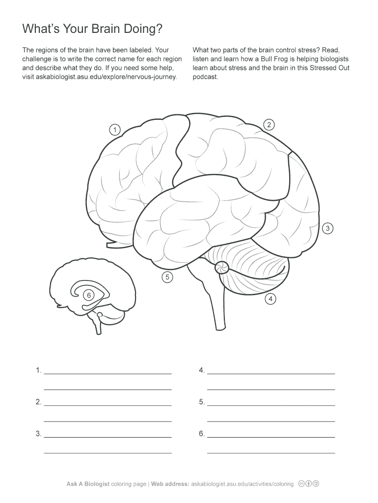 Whats Your Brain Doing Fill Online, Printable, Fillable, Blank