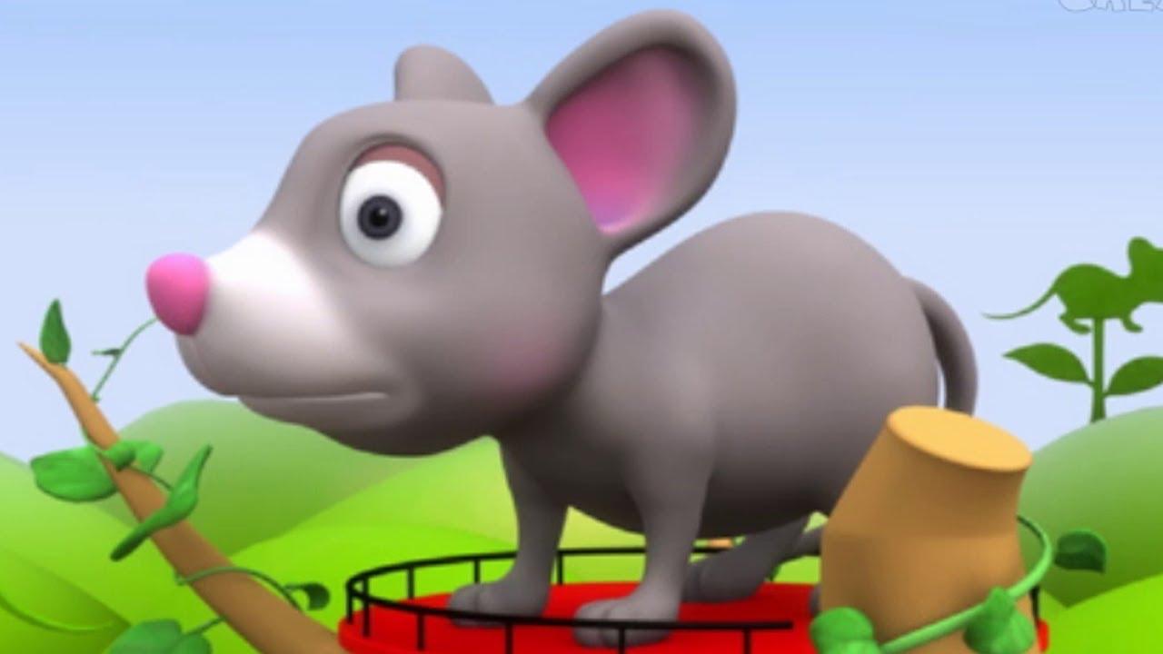 Rat Rhymes