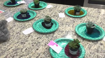 How To Dye Plants With Food Coloring