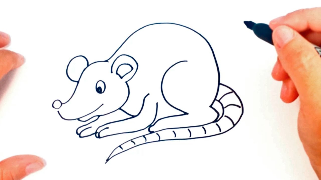 How To Draw A Rat For Kids