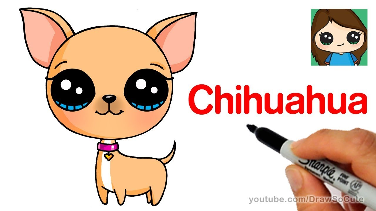 How To Draw A Chihuahua Easy