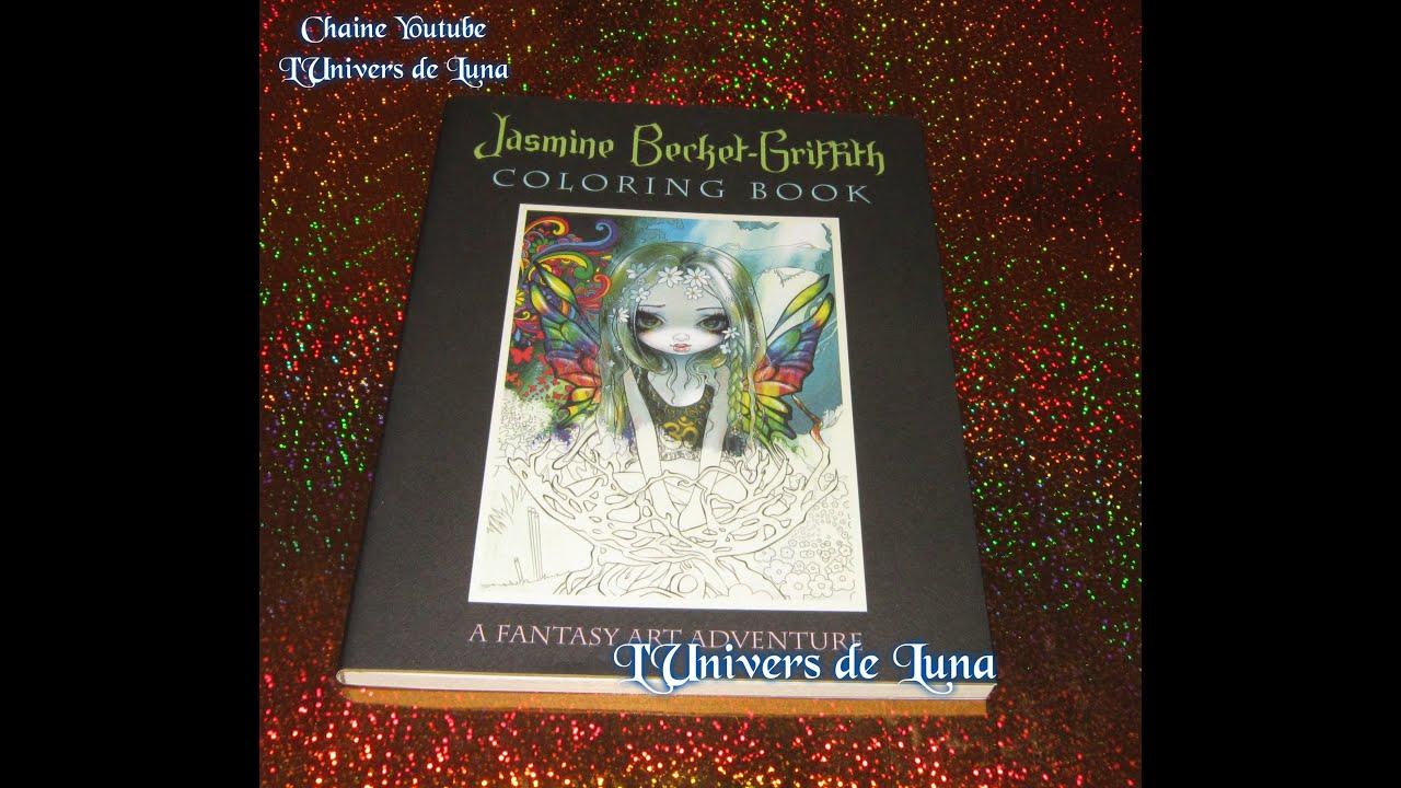 Présentation Livre A Fantasy Art Adventure De Jasmine Becket