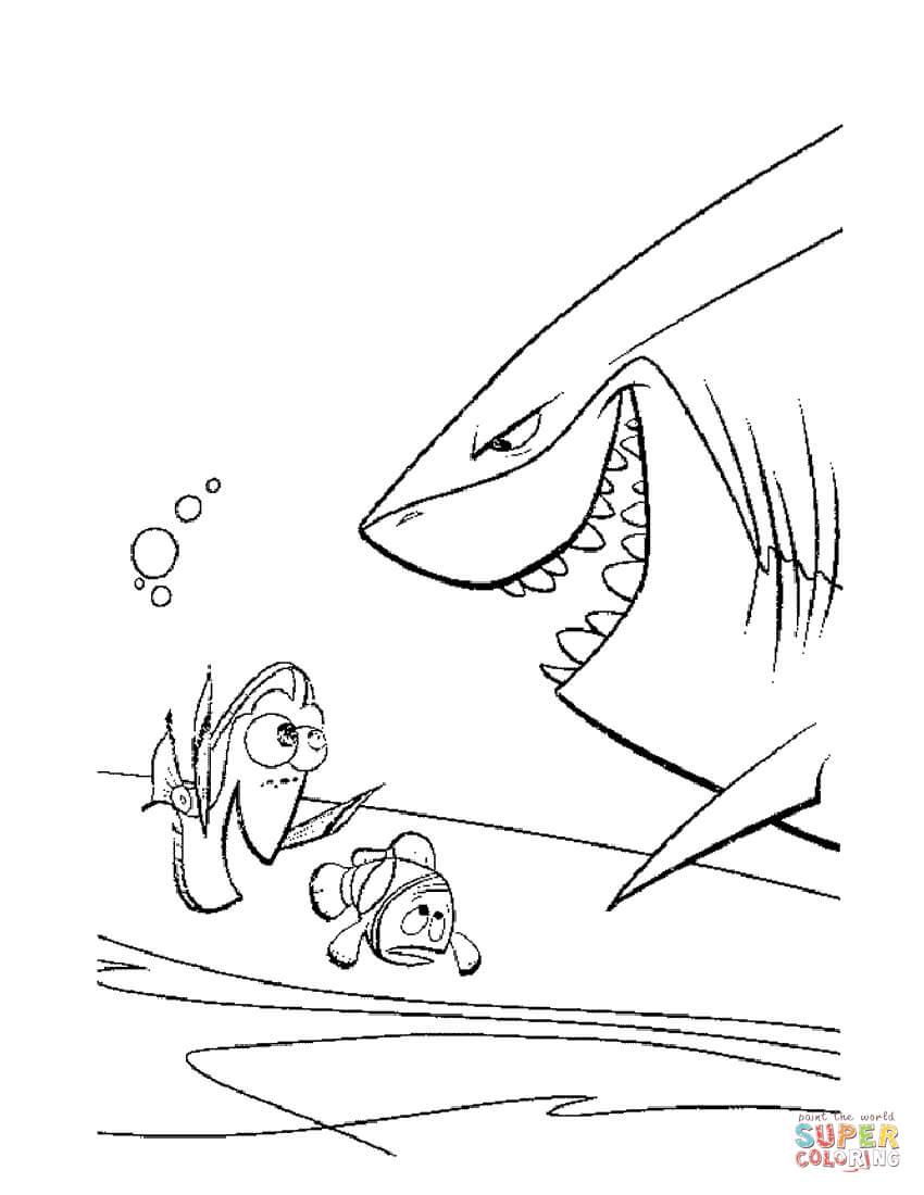 Dibujo De Se Encuentra Con El Tiburón Bruce Para Colorear