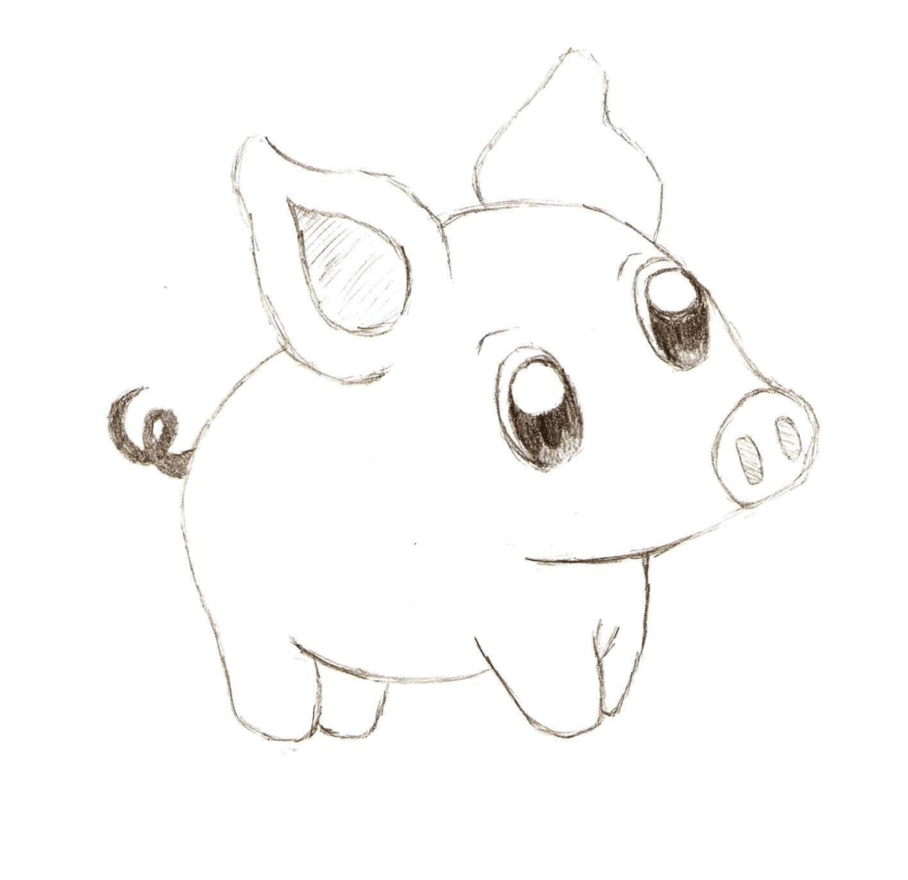 Cute Baby Pig Drawing