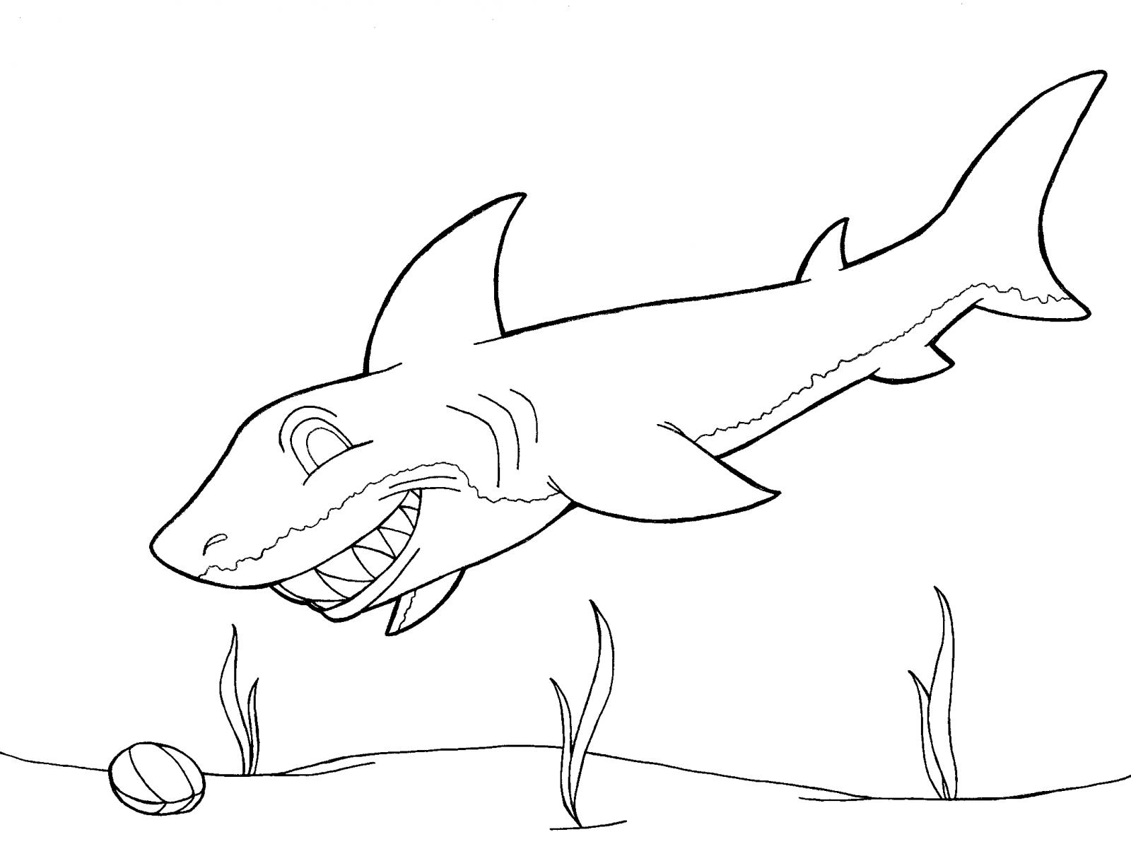 Tiburón Feliz Hd