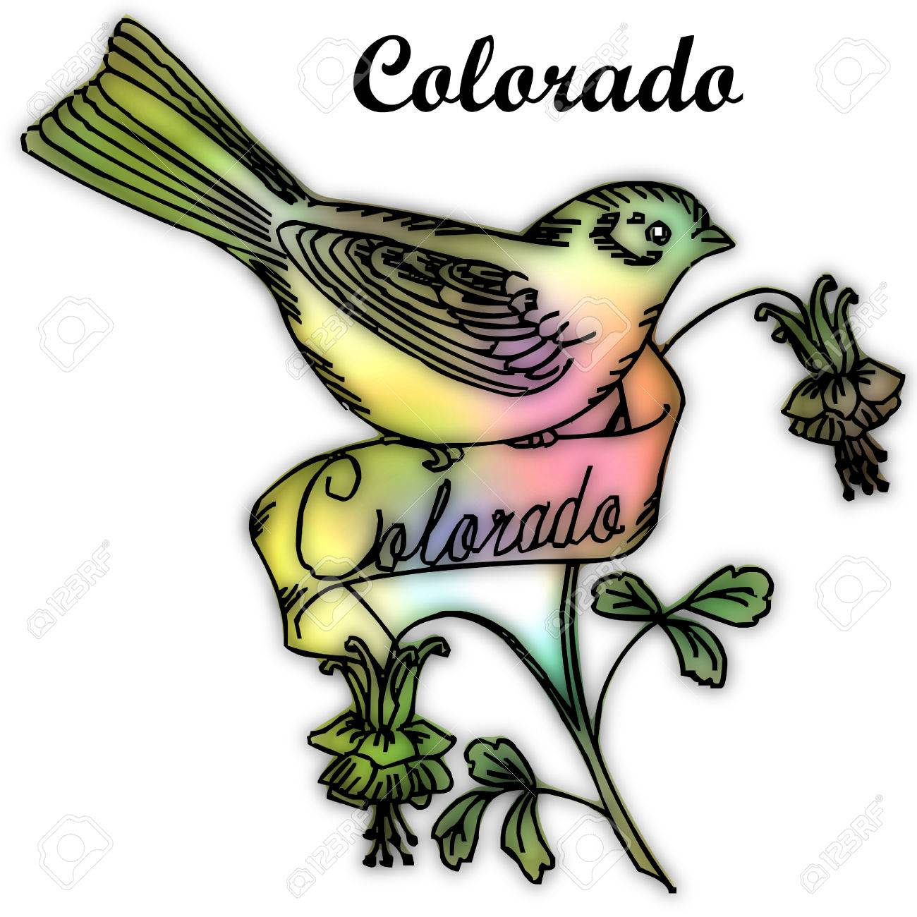 Colorado State Bird Stock Photo, Picture And Royalty Free Image