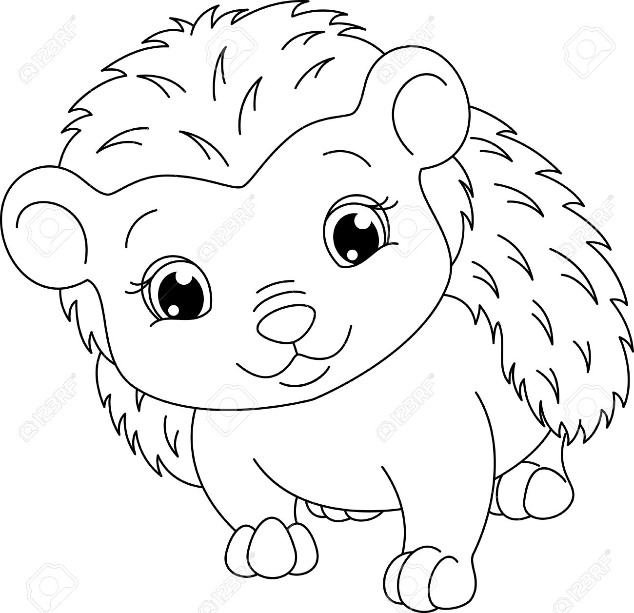 Hedgehog Coloring Page Royalty Free Cliparts, Vectors, And Stock