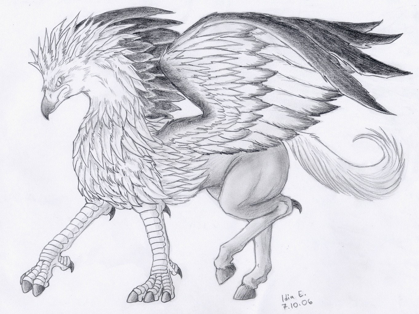5 Buckbeak Drawing Bird For Free Download On Ayoqq Org