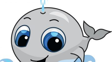 Cartoon Whale Pictures