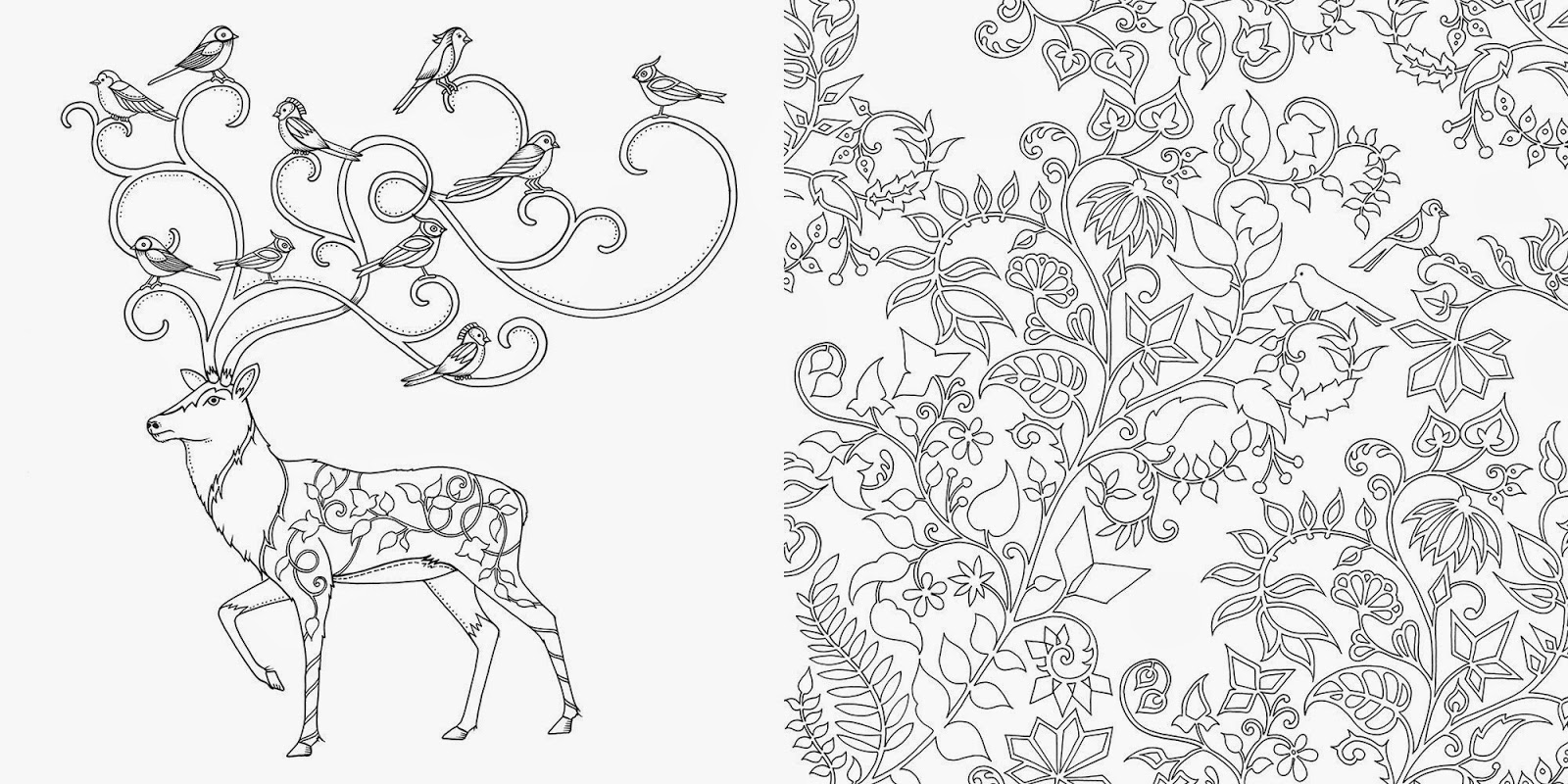 Coloring Book Enchanted Forest Enchanted Learning Home Page