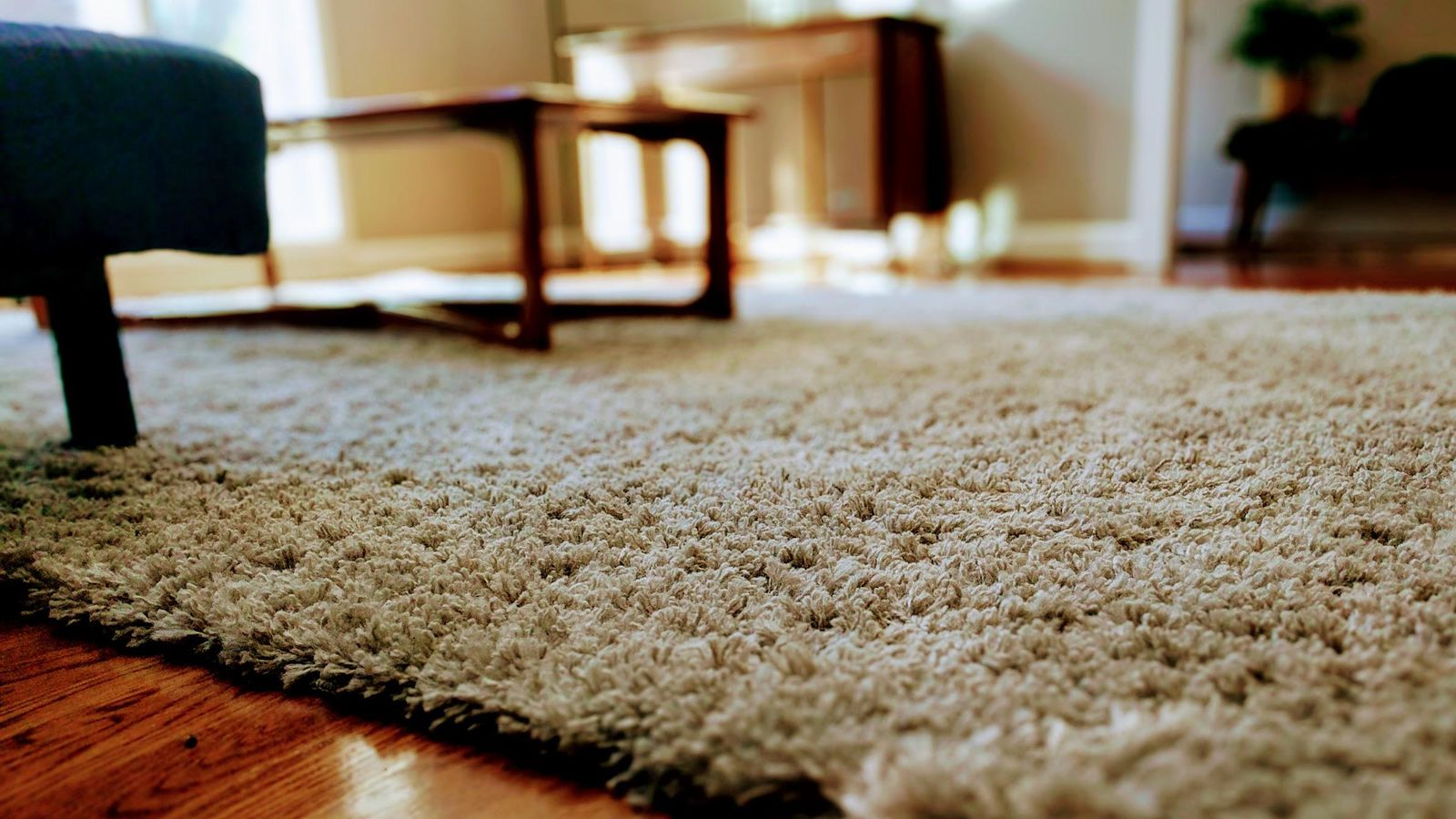 How To Get Rid Of Tough Carpet Stains (yes, Even Cat Pee)