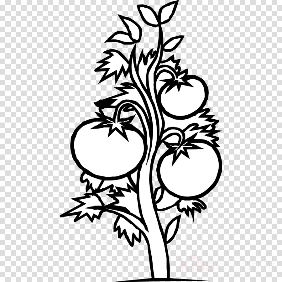 Flower, Tree, Leaf, Transparent Png Image & Clipart Free Download