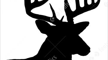 Whitetail Deer Silhouette