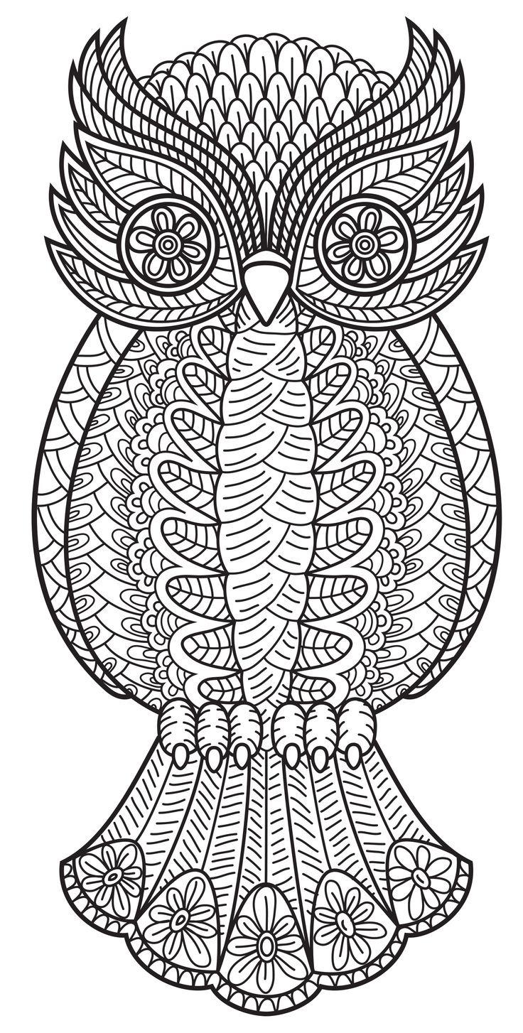 Owl Mandala Coloring Pages Fresh Animal Design Printable Sheet 736