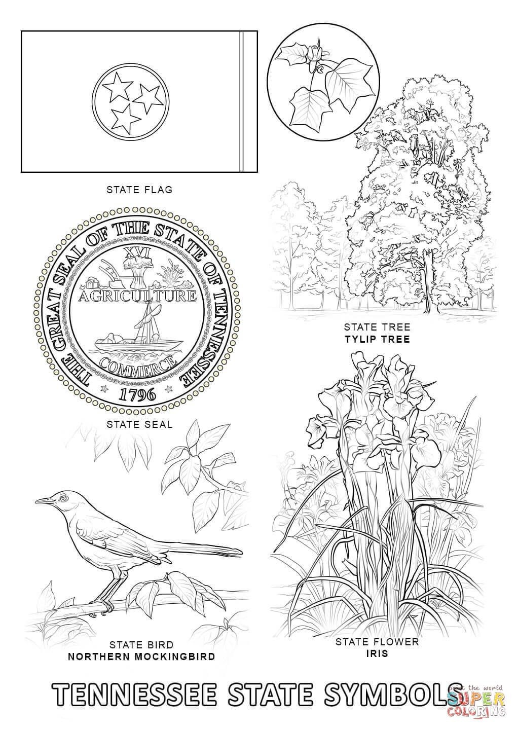 Texas Symbols Coloring Pages Elegant Tennessee State Flag Coloring