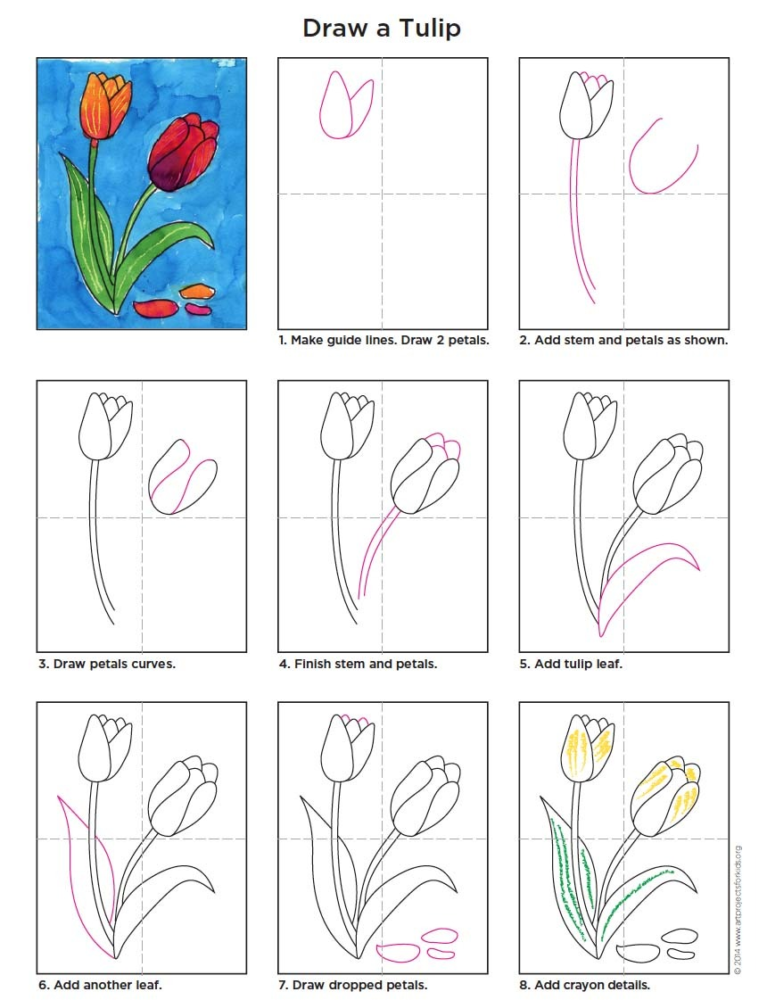 Draw A Tulip · Art Projects For Kids